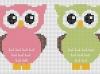 owls_004