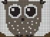 owls_012