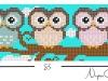 owls_032