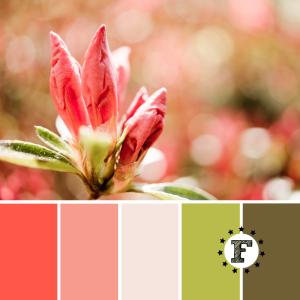 Палитра необычный цветок