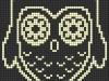owls_013