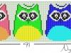 owls_033